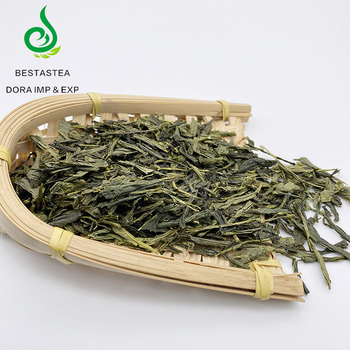 Free sample quick shipment time China Organic Sencha green tea