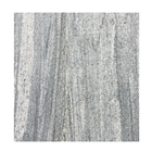 Hot Sale Cheap Chinese Granite stone paving Tiles and slabs for walling and flooring WT601