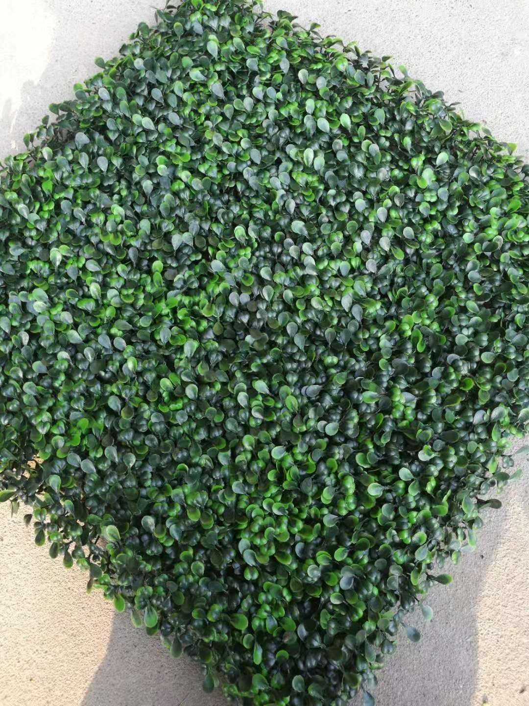 50*50cm Anti-UV plastic greenery plant fence panels boxwood mat artificial hedges for Garden Decoration