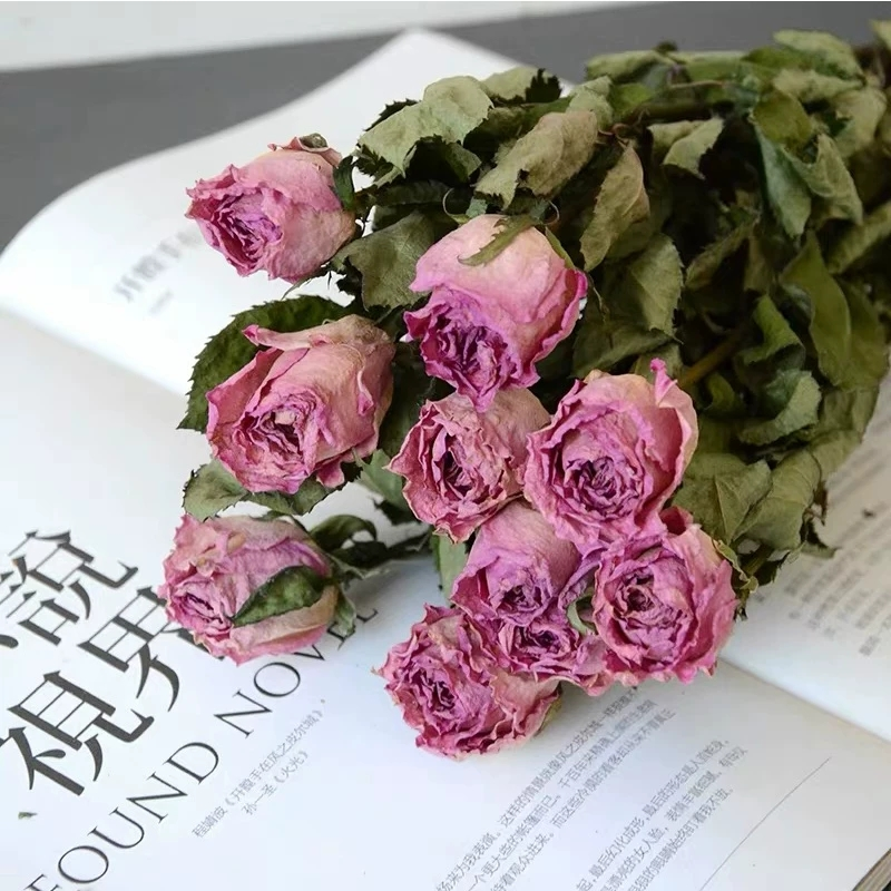 Natural dried rose dry flowers long life roses bouquet with stem