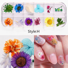 Jewelry Stickers Nail Art Designs Misscheering Mix Dried Flowers Nail Decorations Jewelry Natural Floral Leaf Stickers 3D Nail Art Designs Polish Manicure