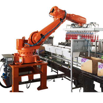 Robot Arm 6 Axis Case Packing Machinery Carton Filling Machine With Robotic System