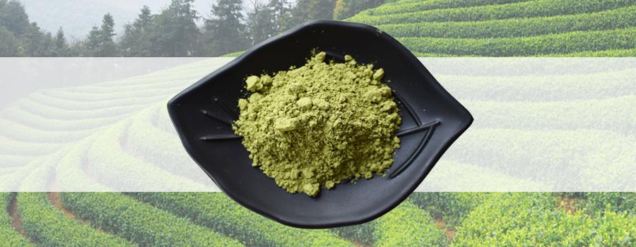 Factory supply Pure Matcha green tea - 4uTea   4uTea.com