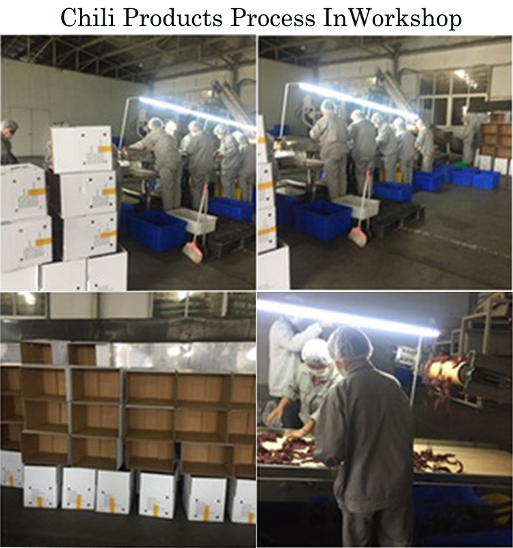 HACCP/KOSHER 100-200 ASTA Droge Zoete Chilli Poeder Prijzen, Verse Chilli Prijzen, sweet Hot Chili Poeder Rood Chilli Paprika Poeder