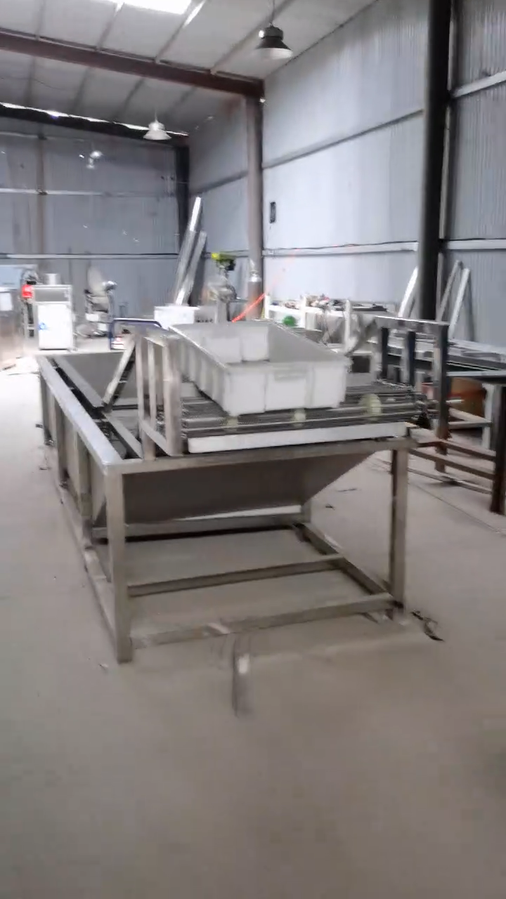 Garlic Production Line Includes Garlic Cleaning Breaking Peeling Sorting Machine