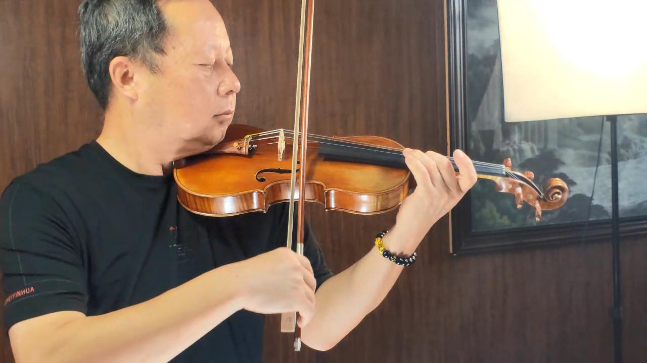 China best practice fiddle for violin wholesaler