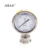Sanitary  Diaphragm Pressure Test Gauge 63mm 98mm All Stainless Steel High Precision