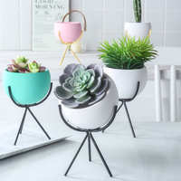 New minimalist cute home decoration pots cheap plant pots indoor succulent plant pots wholesale