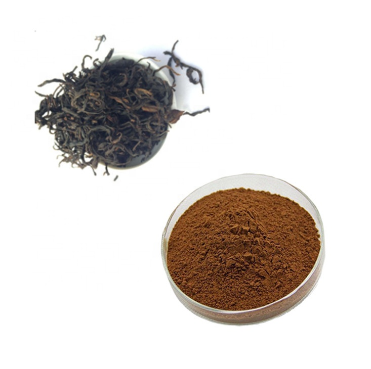 Customer Approved Instant Black Tea Extract Powder with MOQ of 1 Kilo - 4uTea | 4uTea.com