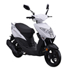 /product-detail/2020-new-product-strong-powerful-adult-4-stroke-50cc-gas-scooter-1600090357685.html
