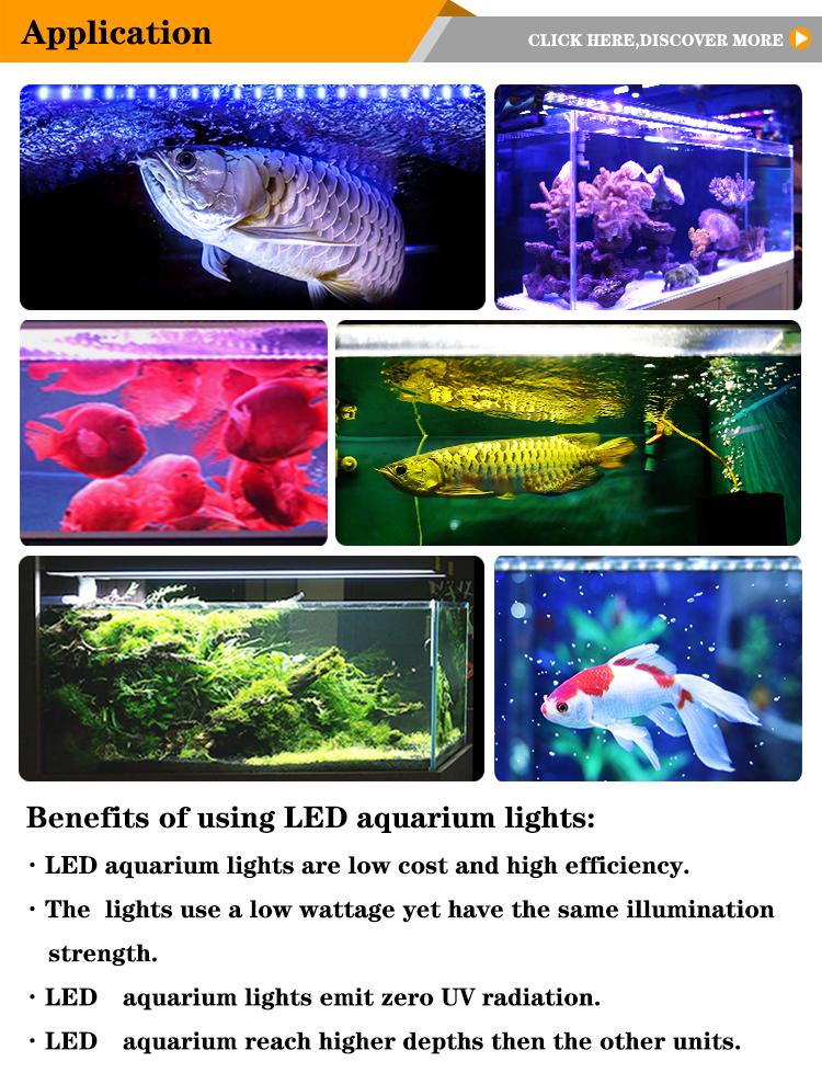 Çin KOI balık ışık IP67 LED akvaryum tankı aydınlatma T8 rgb ışık