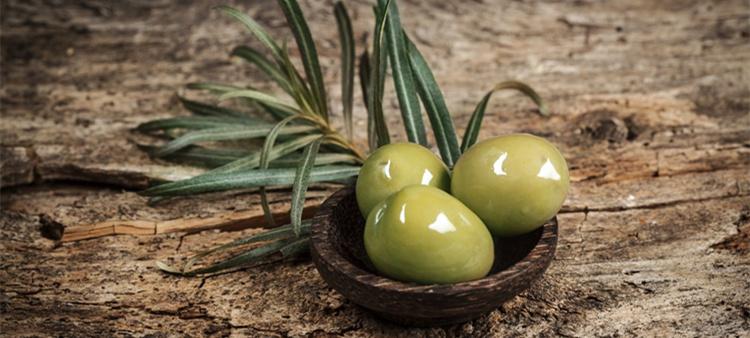 Extracto de hoja de oliva 40% maslínico ácido