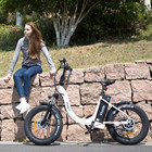 New Arrival hidden battery city folding fat tyre electric bike bicycle