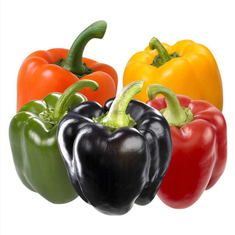 <strong>Planting</strong> Base Supply Vegetable <strong>Seeds</strong> Hybrid Rainbow Sweet <strong>Pepper</strong> <strong>Seed</strong> For Sowing