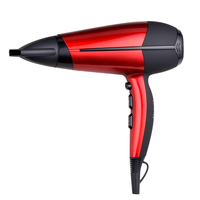 Professional DC motor Salon Hair Dryer Hair Salon Equipment 2200W Hair Dryer