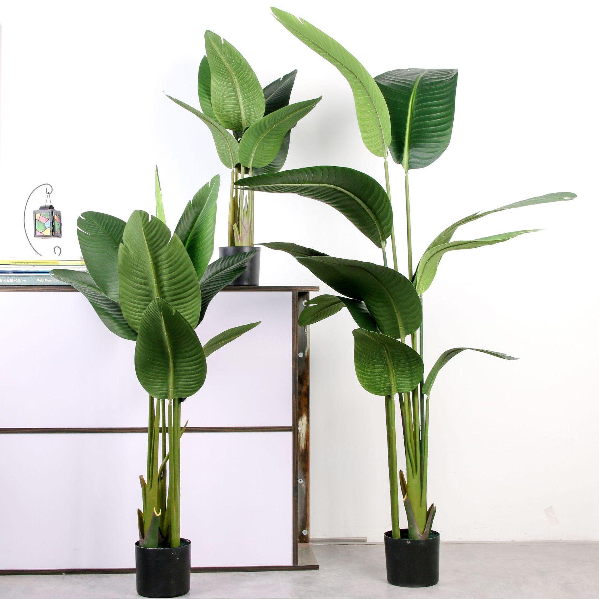 PLSQ1003-80/120/160/180/220 ซม.ประดิษฐ์พืช Traveler กล้วยตกแต่ง Canna ต้นไม้สำหรับในร่มบ้าน