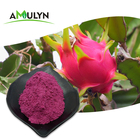 AMULYN Organic Vacuum Freeze Dried Red Dragon Fruit Powder
