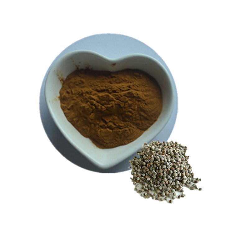 Headache Cure Vitex Agnus Castus Wholesale ChasteBerry Extract Plant <strong>Powder</strong>