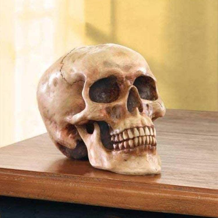 Home holiday resin custom realistic human head halloween decoration skull