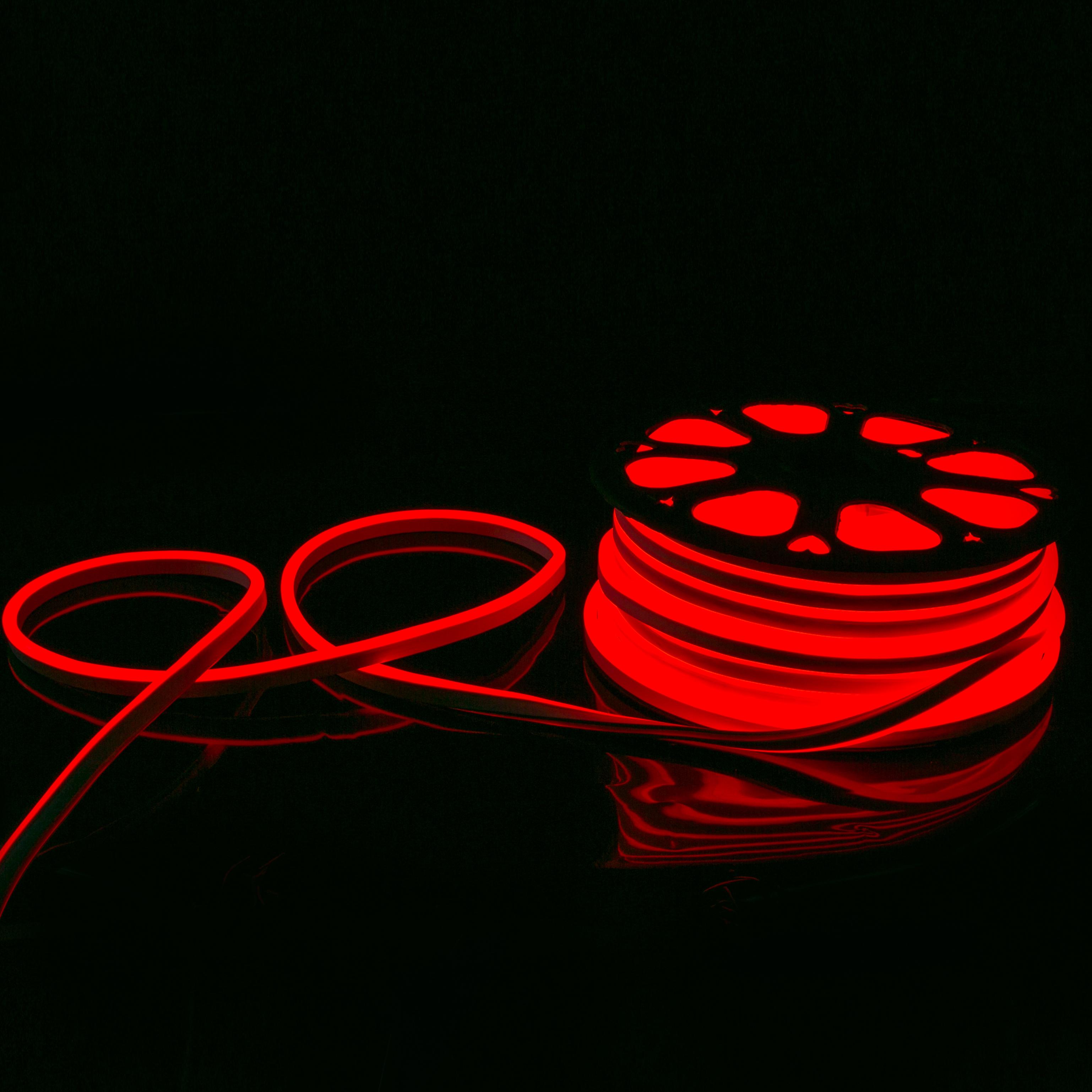 Manufacturer direct sale custom led neon lighting fixture 220v