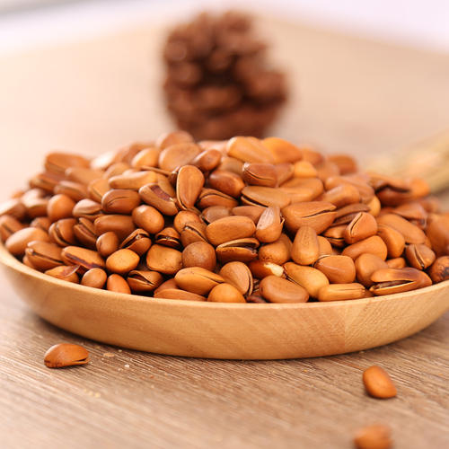 pine nut with shell high quality pine nut Pine nut prices