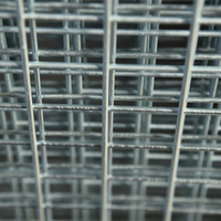 China low price 2.8mm zinc coated galvanized welded wire mesh sheet fence panels