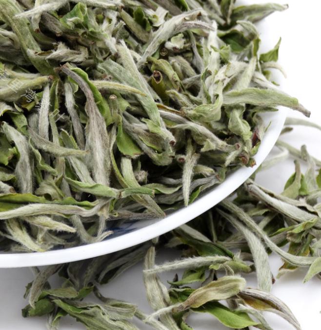 Chinese Fuding White Tea Pai Mu Dan White Peony Loose Tea Organic White Tea - 4uTea   4uTea.com