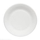 Customizable Biodegradable disposable paper plates