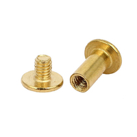 China custom m2 m5 m8 5mm 8mm 12mm 70 mm 1/8 brass book binding post rivets slotted chicago screw color male and female screws