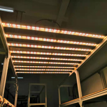 Dimmer dan Timer Hidroponic LED Grow Light Aurora 500 W Samsungs LED Grow Light untuk Taman Di Dalam Ruangan
