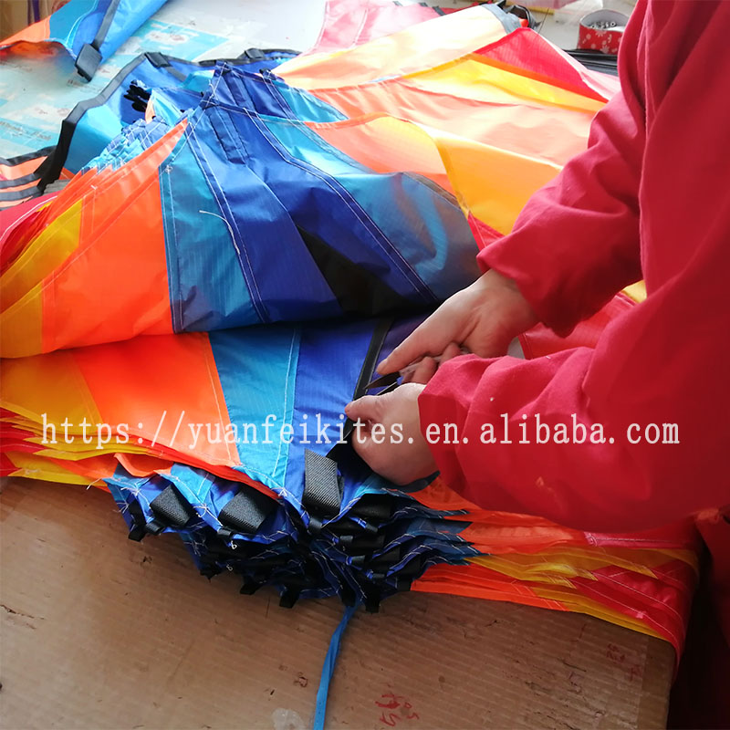promotional custom made big  delta  kite  RPET recycled polyester kite