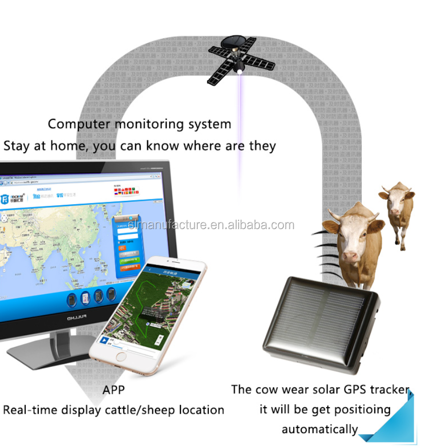 Auto Solar Charging Horse GPS Tracker Waterproof IP67 Cow Locator with Anti-remove Alarm
