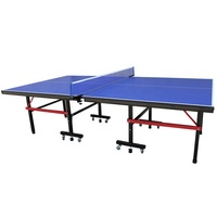 Professional Sports Facilities Folding Removable Table Tennis Table