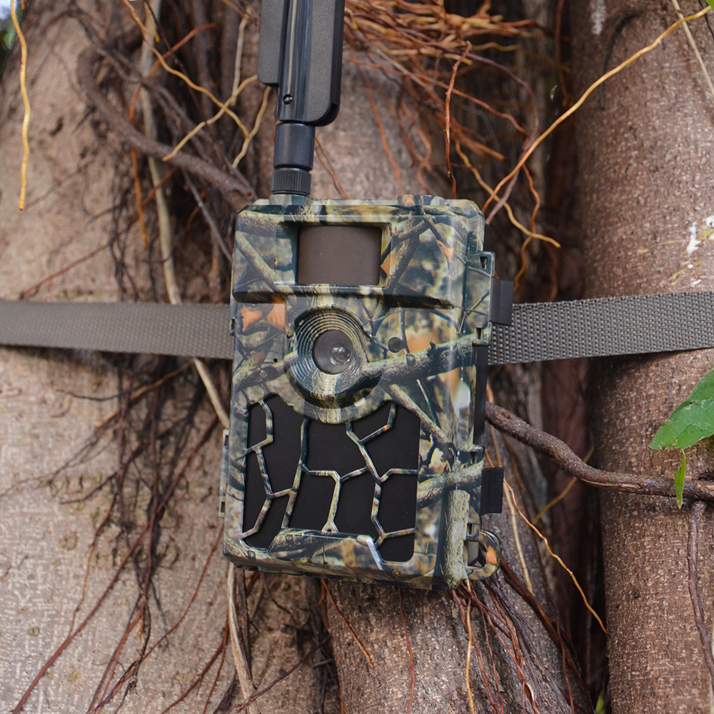 Hot sale BSCI factory direct wifi camera 1080p waterproof hunting trail camera for Wholesale
