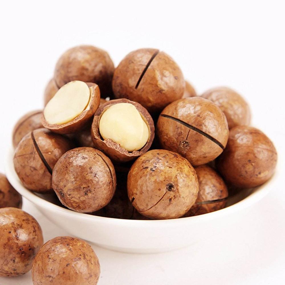 Top Grade Macadamia Noten Met Shell Hoge Kwaliteit Macadamia Noten