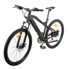 Electric Fashion Mountain Electric Bicycle 36V Hidden Down Tube Battery 250W Rear Brushless Motor