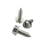M6 Flange Hex Slotted Head Stainless Steel License Plate Screws