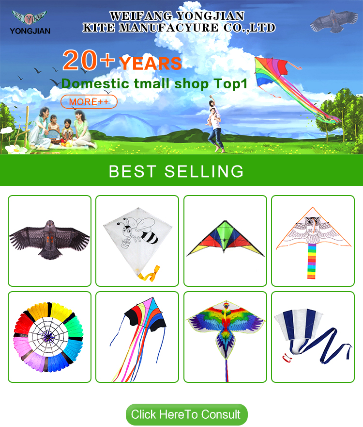 Yongjian 2020 Dual Line Easy flying Custom Printed outdoor playing  training kids albatross stunt kite From Weifang