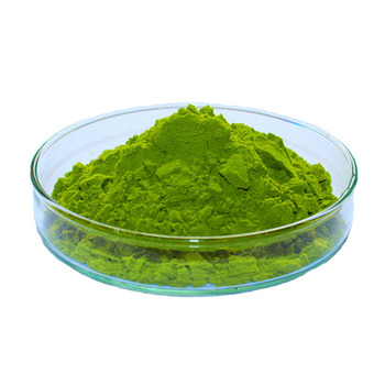 Natural Barley Grass Powder Barley Juice Powder