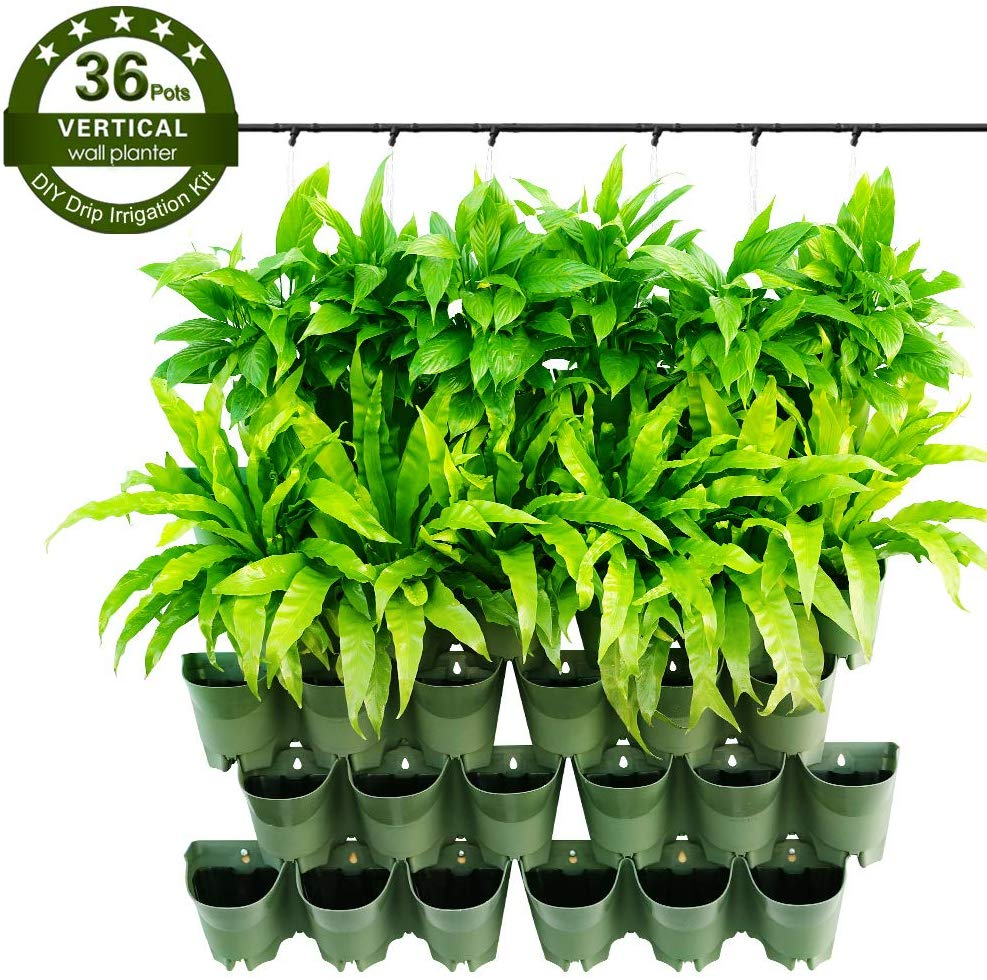 Plastic Green Vertical Garden Living Wall Planter Self Watering Flower Pots With Drip Irrigation System Buy Vertical Garden Wall Planter Living Wall Planter Vertical Self Watering Flower Pots Product On Alibaba Com