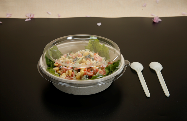 Competitive Price Natural Pulp Round Disposable Paper plates with lid Soup rice Bowl with bagasse lid