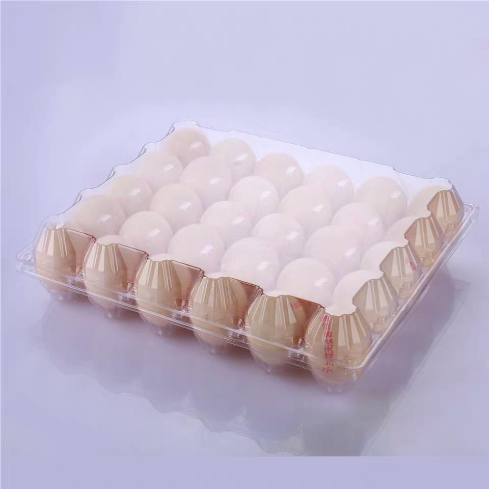 30 пластиковый лоток для яиц