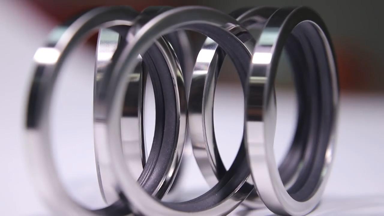 DLSEALS PTFE + нержавеющая сталь 304 губ уплотнение 73*95*10 поворотный металлический уплотнитель используется для масла ссылка