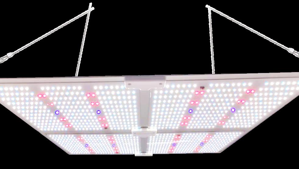 450 Вт квантовый Samsung LM301B LM301H комнатный растительный светильник паук SF-4000 полный спектр светодиодные лампы для выращивания