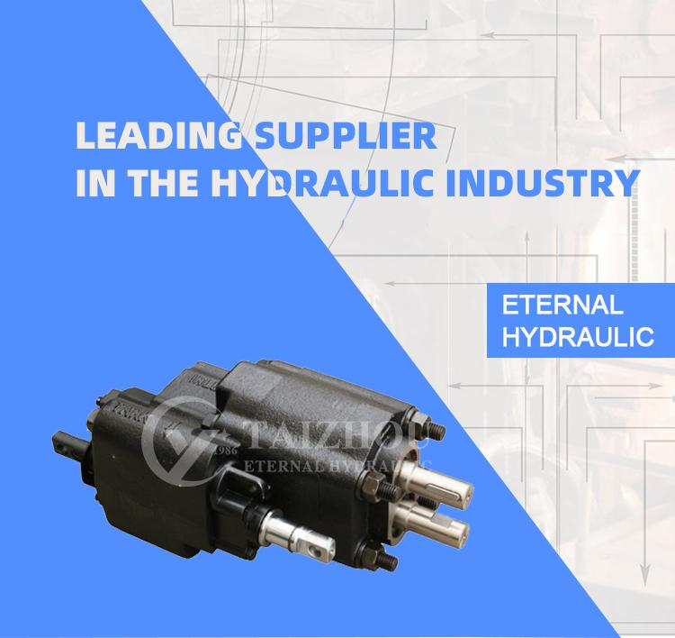 Free Shipping Parker Metaris C101-20(25)-LAS Hydraulic Pump, Airshift American Dump Truck Pto Gear Pump