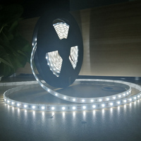 SMD2835 Innovative LED High CRI & Efficiency IP66 2300- 5000k high bright flexible LED strips