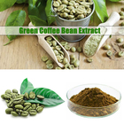 Green Coffee Extract Bean Chlorogenic Acid HONGDA Factory Supply Green Coffee Extract Weight Loss Chlorogenic Acid Price Green Coffee Bean Extract