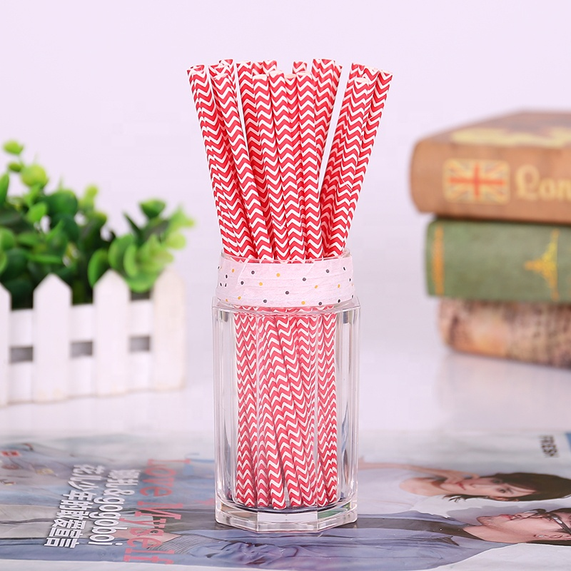 Daily Use Compostable Paper Straws with Individually Wrapped