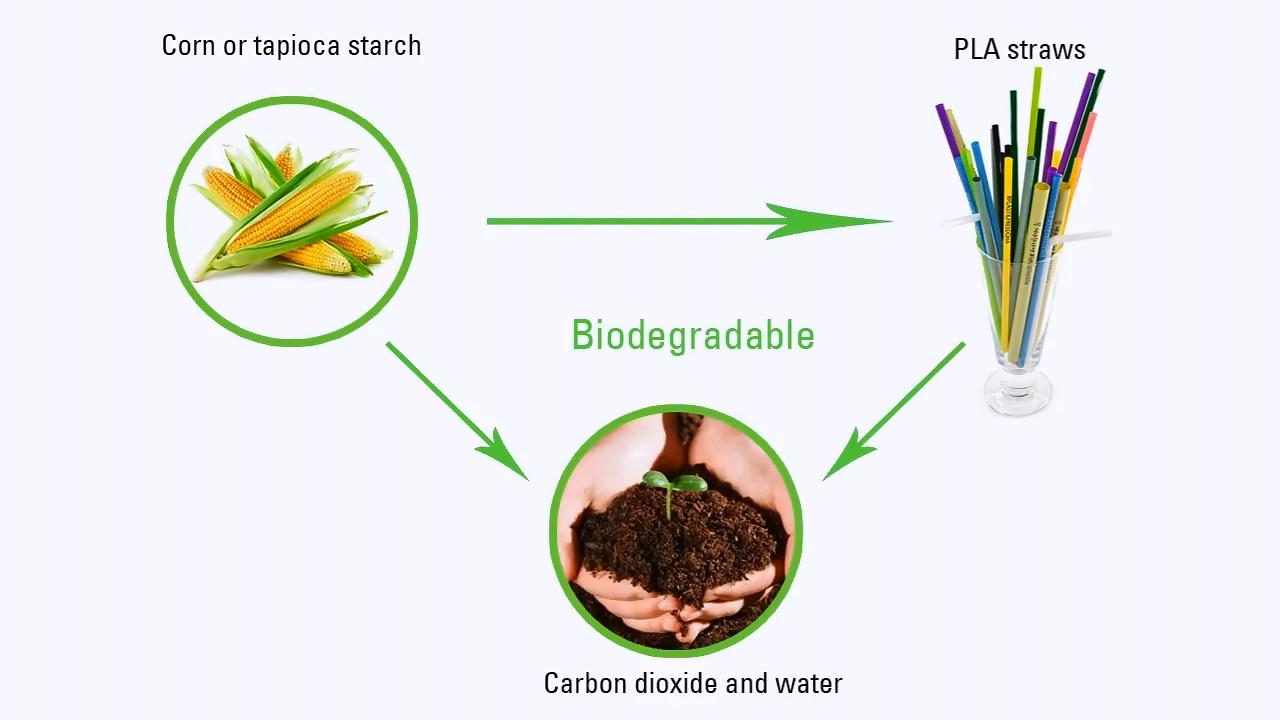 Toptan çevre dostu ekolojik payet % 100% biyolojik olarak parçalanabilir renkli pla kabarcık çay bardağı