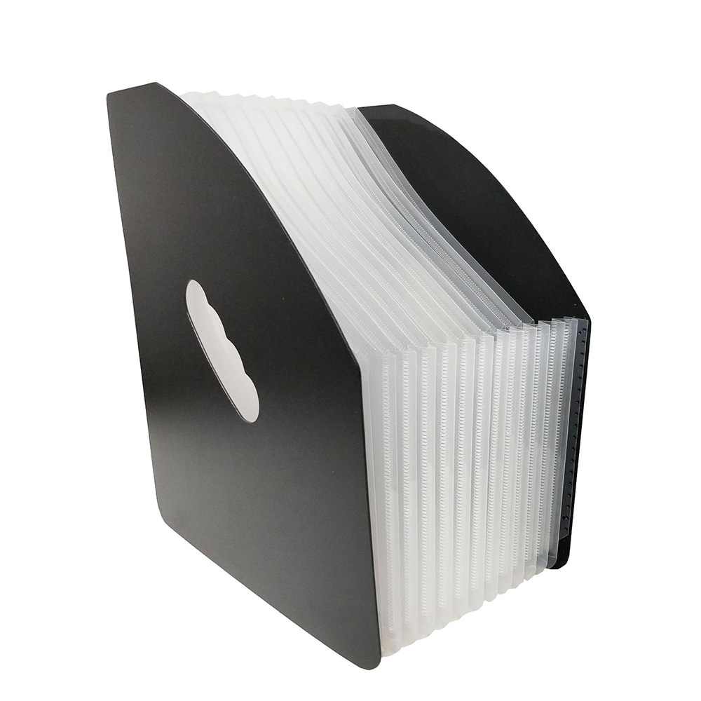Veelkleurige Expanding File Folder Accordeon Document Organizer Met 12 Layer Sluiting Voor Huis Of Kantoor